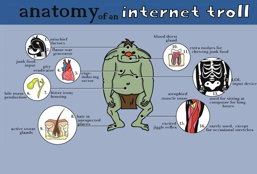 anatomy of a internet troll!